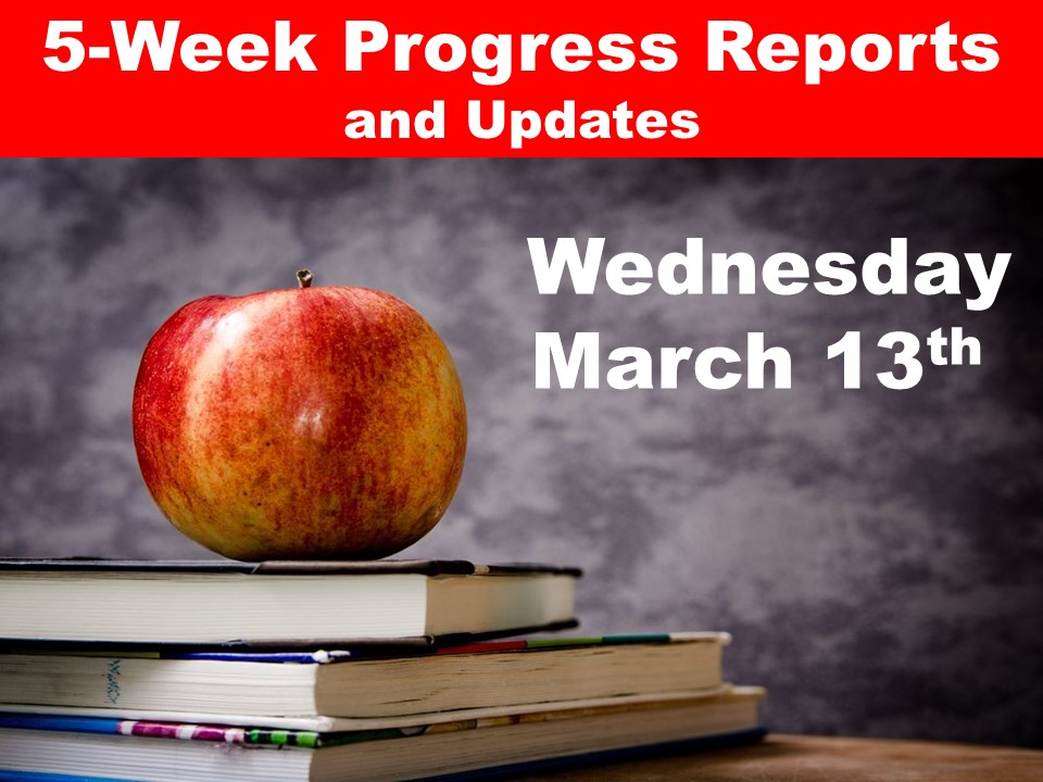 5-Week Progress Reports
